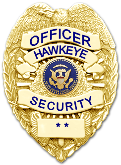 Hawkeye security company jamaica